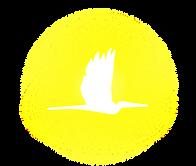 Logo_Yellow Spotlight_Icon.png