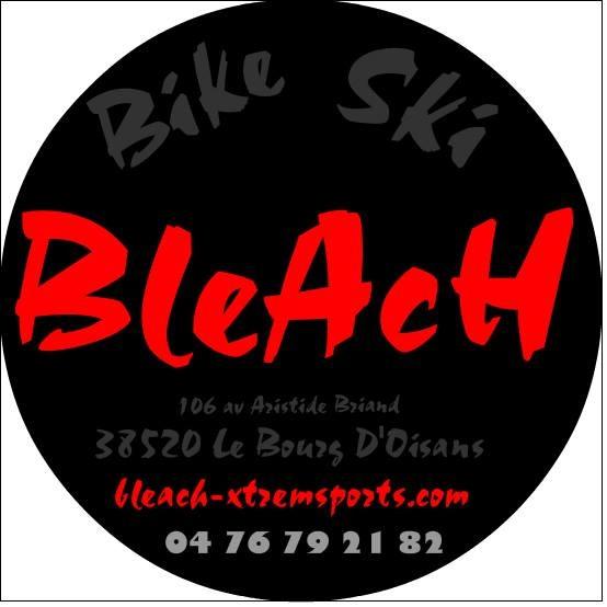 bleach logo.jpg