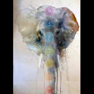 Elephant Chakras