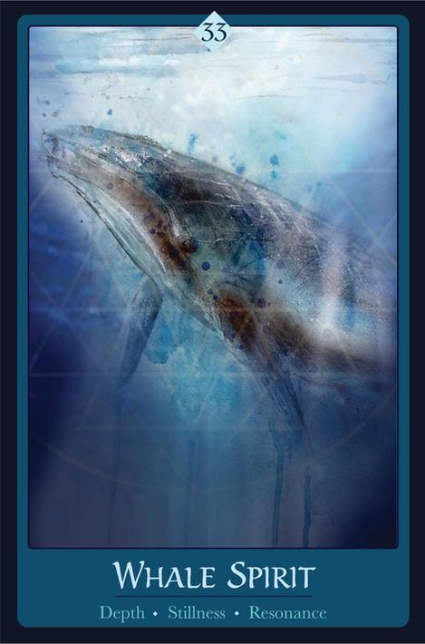 Whale Spirit Card 3.8x 5.8 2.jpg