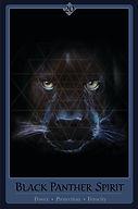 Black Panther Card 3.8x 5.8.jpg