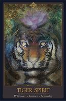 Tiger Spirit Card 3.8x5.8.jpg