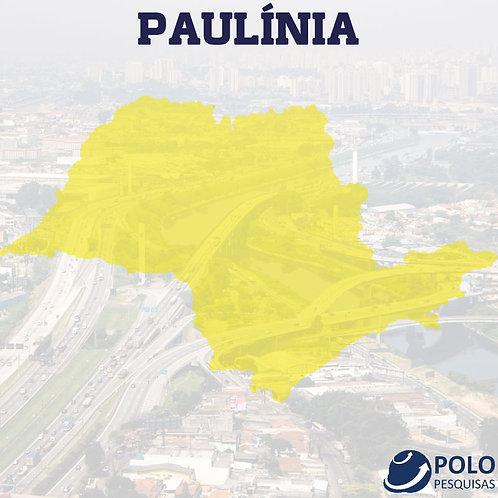 PAULÍNIA
