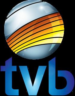 tvb-logo.png