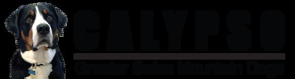 Calypso_logo.png