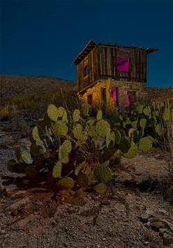 Cactus Shack