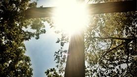 An Ongoing Faith — Mt. 25.21