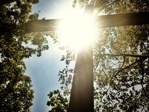 Russell Lackey: How to turn a vicious cycle in ministry into a virtuous one