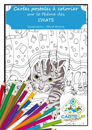 couverture face chat (6,90 euros).jpg