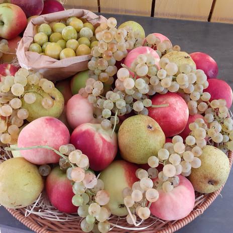 corbeille fruits été.jpg