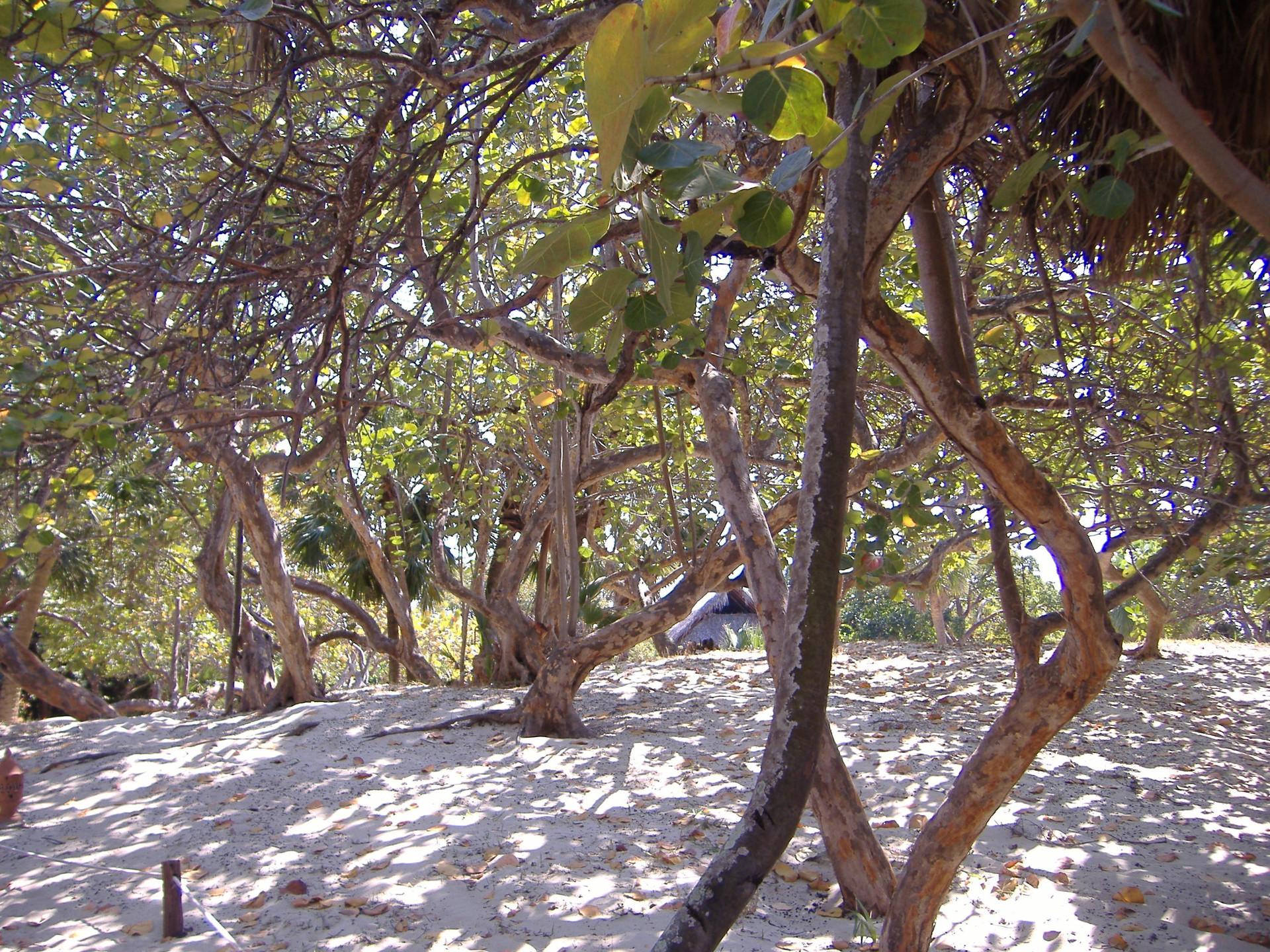 Kuba, Beach