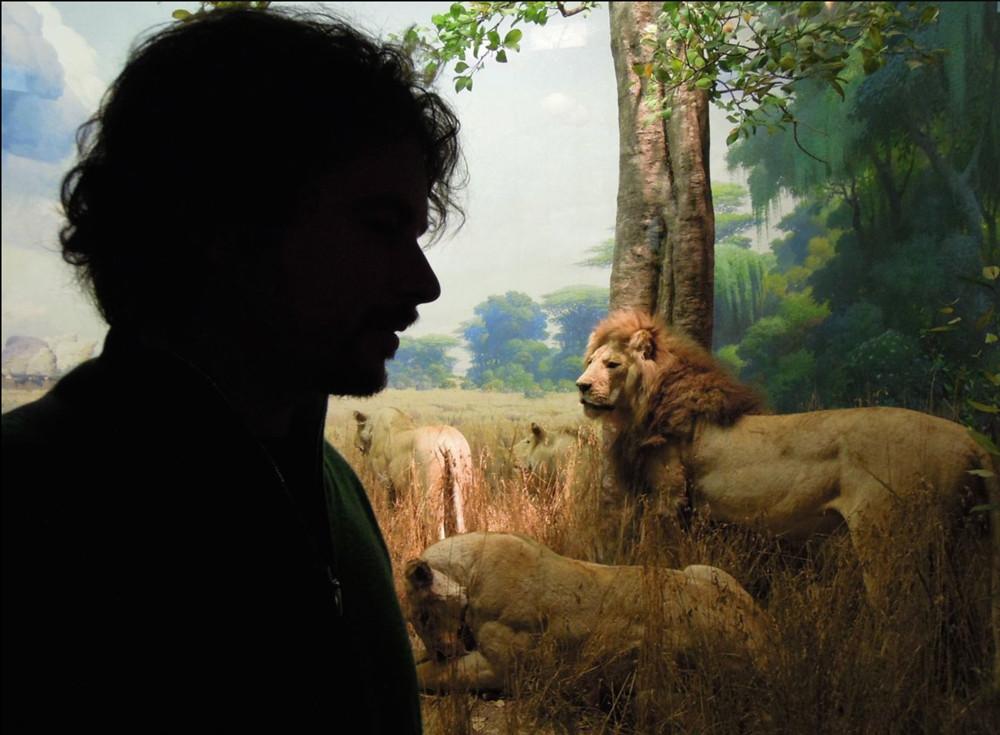 portrait-lions-anca-rafan.jpg