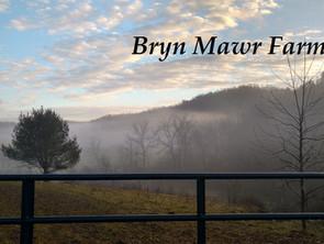 Bryn Mawr Farm - Keeping Beneficial Traits – Brush Feeding