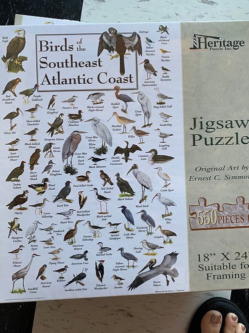 Birds of the SE Puzzle 550