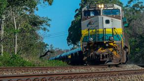 Proposta para construção de ferrovia estadual é homologada