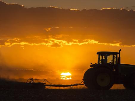 Contratação de seguro rural atinge marca de R$881 milhões em 2020
