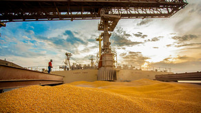Valor da Produção Agropecuária de 2021 atingiu R$ 1,11 trilhão em maio