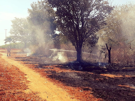 Multa para quem fizer queimada pode passar de R$ 1 milhão