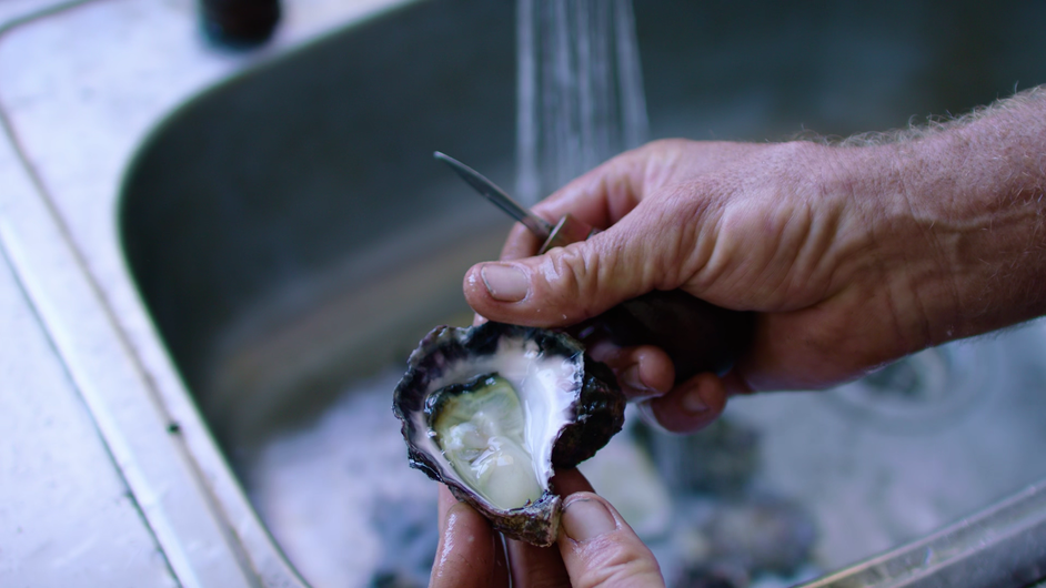 Putting a Face to Farming - Armstrong Oysters