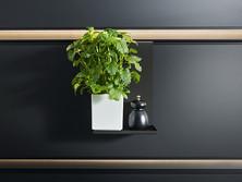 Storage shelf for vinegar/oil