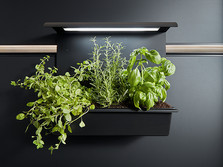 Panel garden with integrated lighting