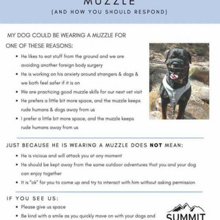 why a muzzle.
