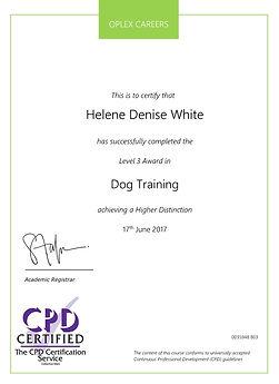 dog training certificate.jpg