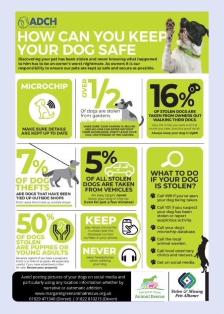 dog theft (2).JPG