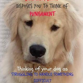 NO punishment