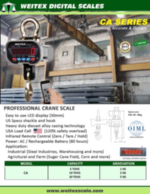 2020 Crane Scale CA Series Pic copy.jpg