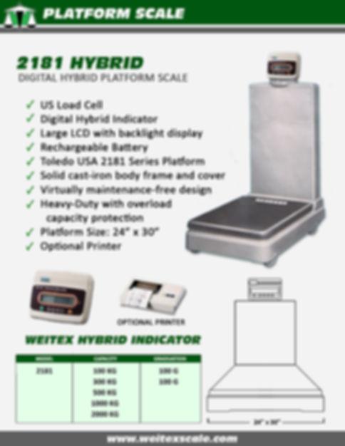 Toledo Digital Hybrid.jpg