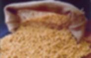 soya-beans-700a08c0855a6bdba2639fcffb04b