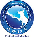 APDT_Prof_COLOR-281x300.png