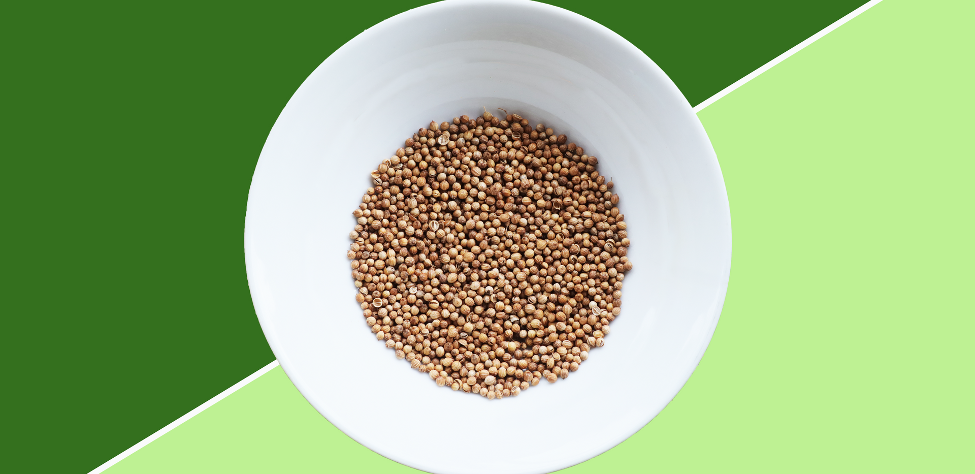SP58 - Coriander Seed
