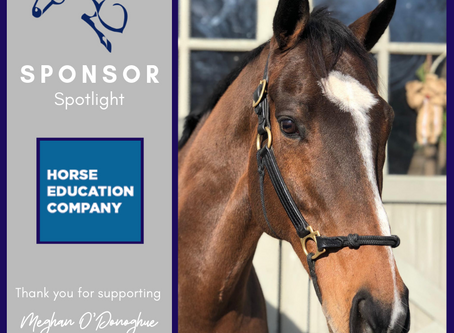 Sponsor Spotlight: The Horse Education Company
