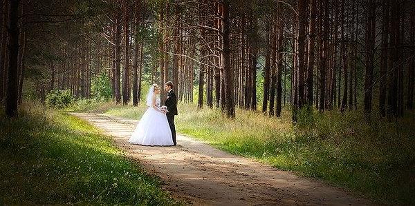 wedding-626020_640.jpg