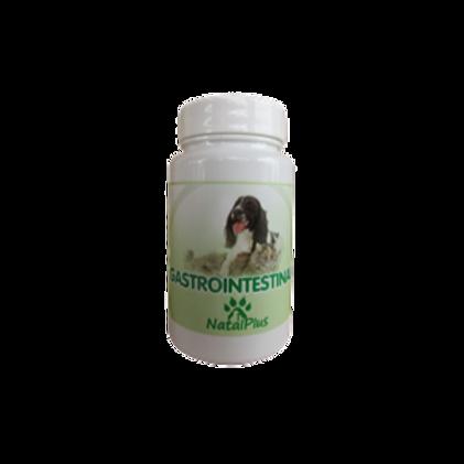 Gastrointestinal 100 pastillas