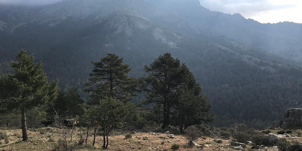 Ruta La Barranca