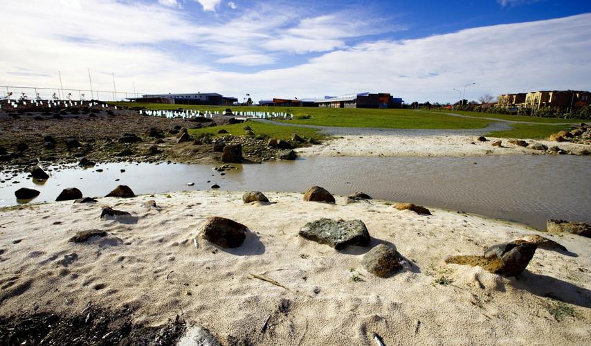 Berwick Field Landscape 1.jpg