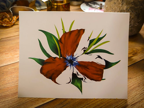 American Flower | 8 Boxed Note Cards