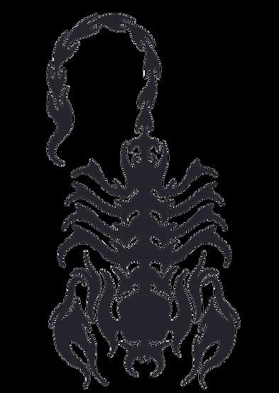 scorpion tiff.tif