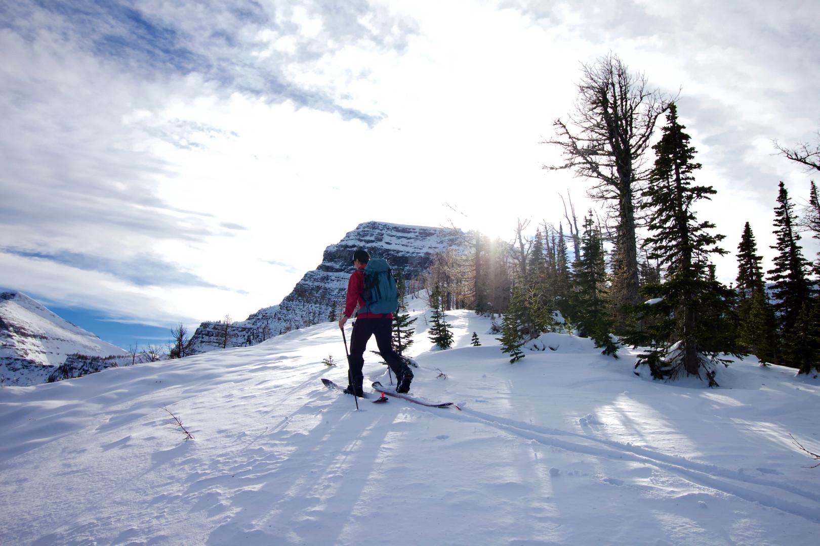 Making our way up forum ridge