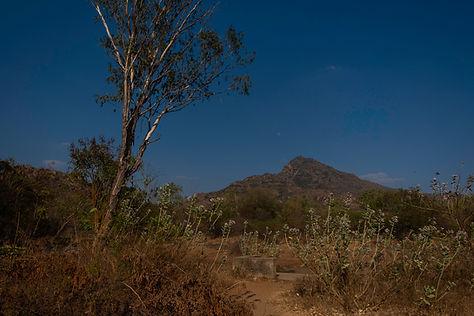 Arunachala-0367.jpg