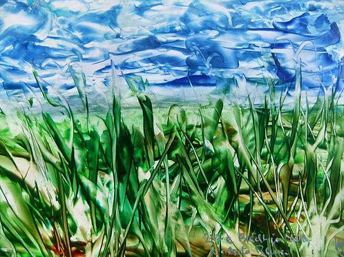 217e Prächtige Natur, Druck, Landschaftsbild, ca. 21 cm * 30 cm