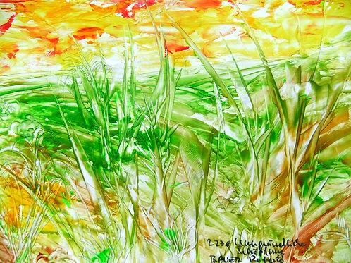 227e Unergründliche Schöpfung, Druck, Landschaftsbild, ca. 21 cm *