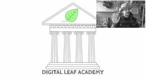 Diventa un Affiliato della Digital Leaf !