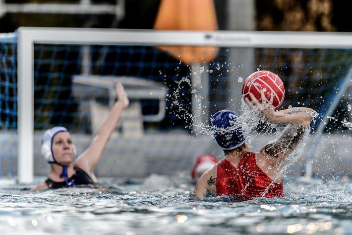Schweizer Meister Wasserball