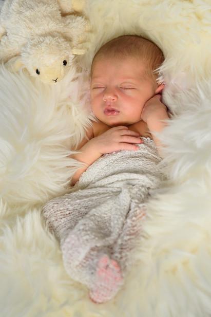 BK Studio Thalwil - Schwangerschafts und Babyfotos, Familenfotos