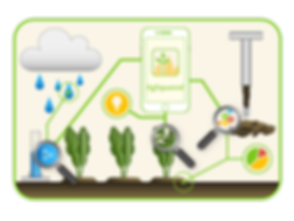 Agronomy Workflow Management