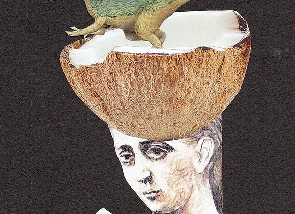 Coconut dinosaure